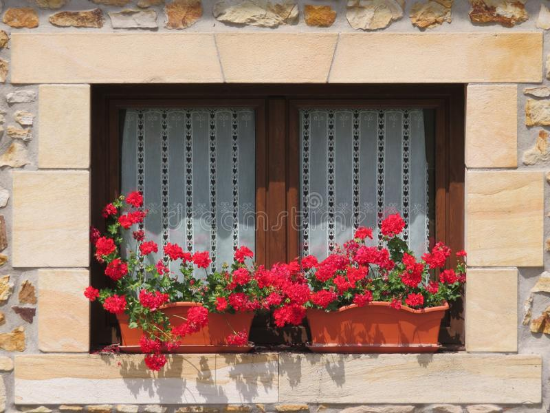 Janela de madeira bonita decorada com as flores vermelhas de cores intensas imagens de stock royalty free