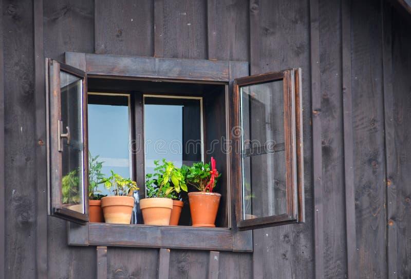 Janela de uma cabine de madeira velha com flores foto de stock royalty free