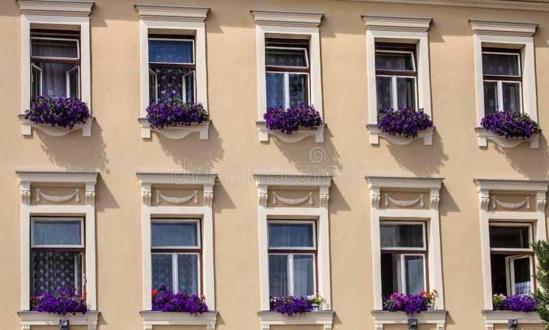 Janela decorada com a casa velha do patrician das flores, Jihlava, República Checa imagem de stock