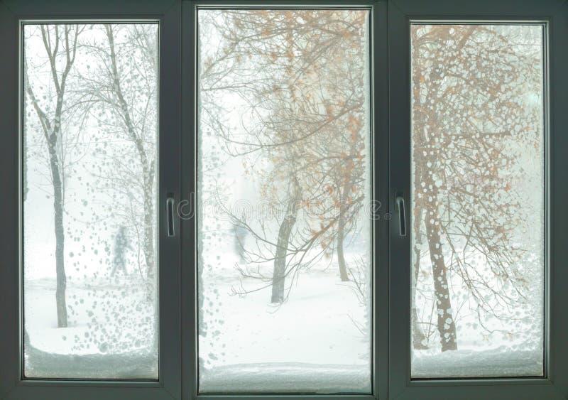 Janela no russo liso com blizzard e árvores da neve foto de stock