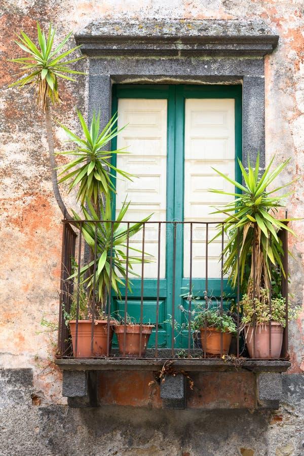 Janela rústica com plantas imagem de stock royalty free