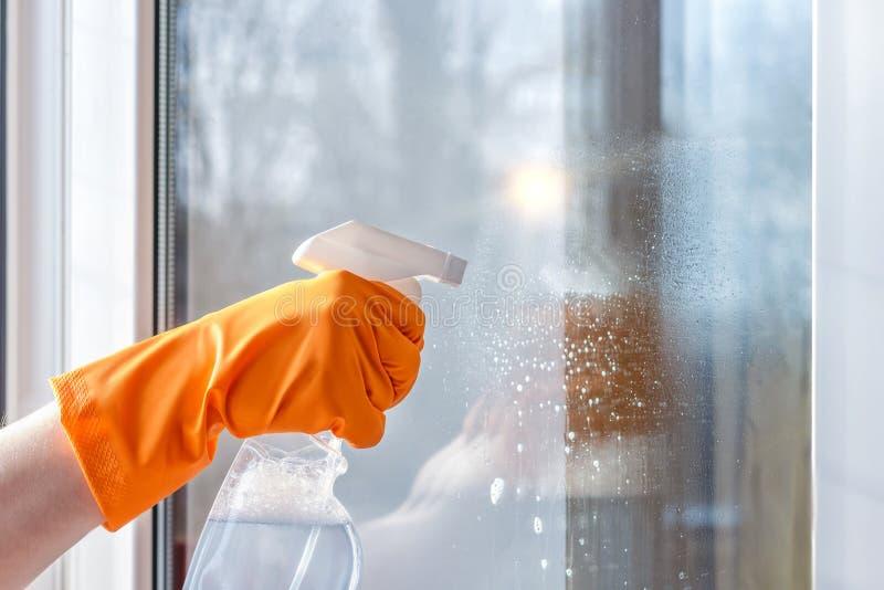 Janelas da limpeza usando produtos de limpeza foto de stock royalty free