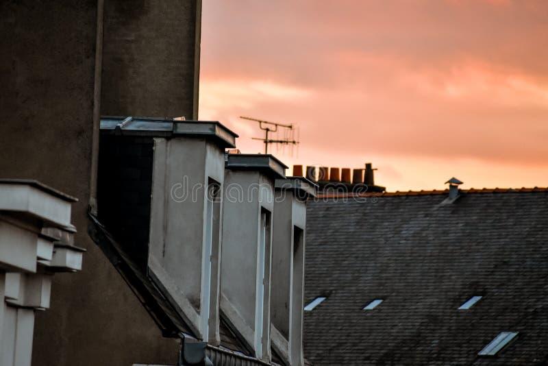 Janelas de trapeira no por do sol narcissist imagens de stock
