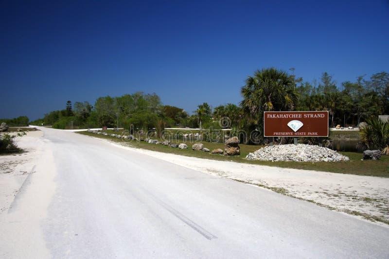 Janes Scenic Highway. Fakahatchee Strand Preserve State Park, Florida Everglades stock photography