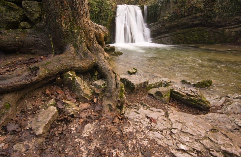 Janets Foss Wasserfall, Malham lizenzfreie stockbilder