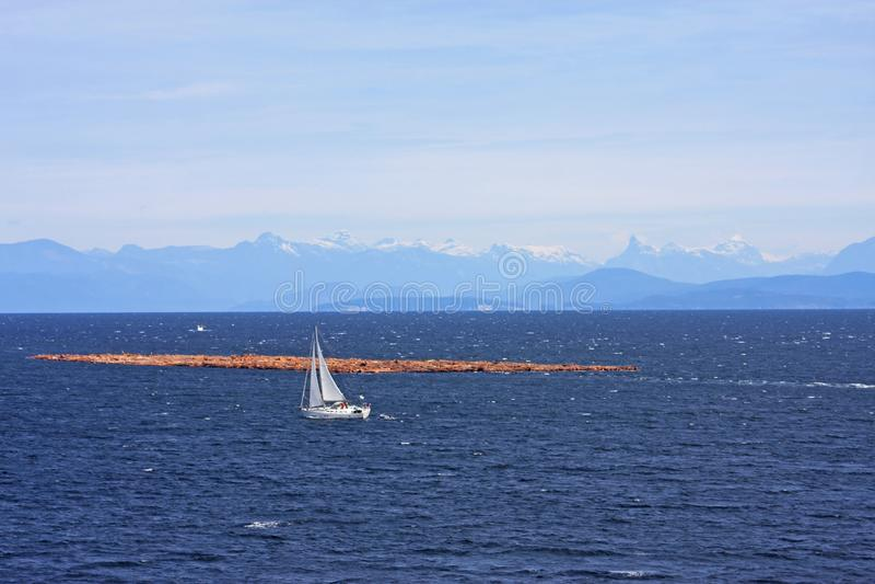 Jangada lombar fora da ilha de Vancôver fotografia de stock