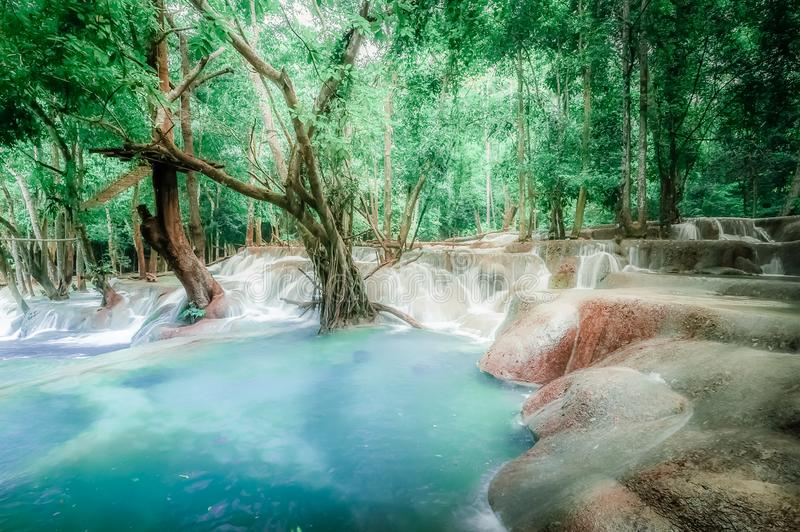 Jungle landscape with turquoise water of Kuang Si waterfall. Laos royalty free stock image