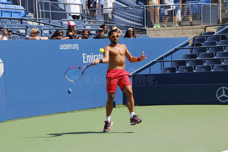 Download Janko Tipsarevic editorial photo. Image of professional - 33136306