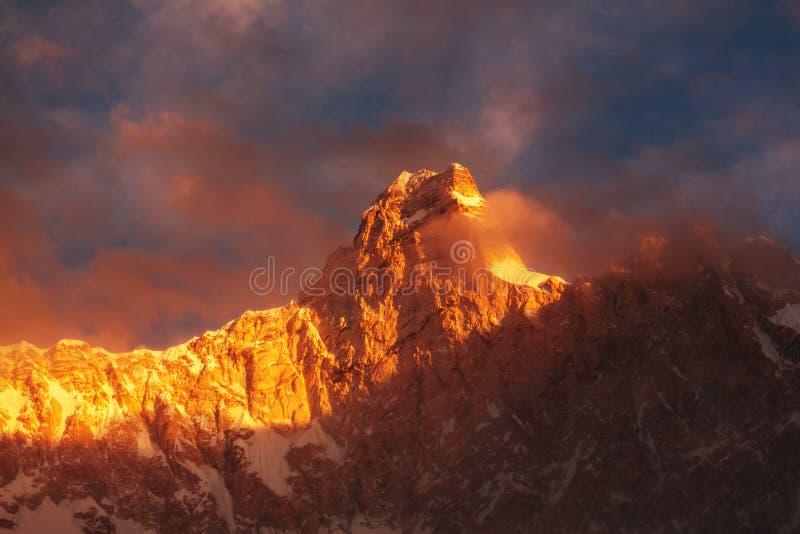 Jannu på solnedgången royaltyfri foto