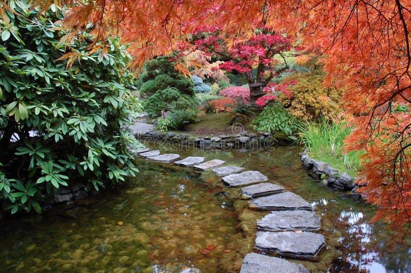 Janpanese garden royalty free stock photo