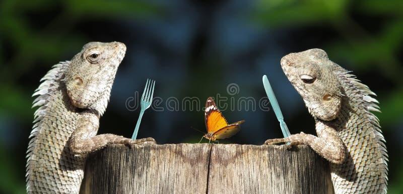 Jantar romântico engraçado, compartilhando do conceito fotografia de stock royalty free