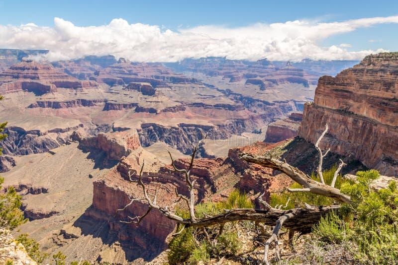 Jante du nord de vue de Grand Canyon de point de Mohave photos libres de droits
