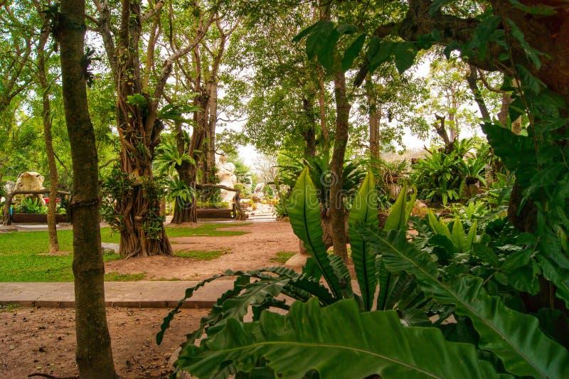 27. Januar 2013 ist tropischer botanischer Garten Nong Nooch ein 500-Morgen-botanischer Garten und -Touristenattraktion an Kilome lizenzfreie stockfotografie