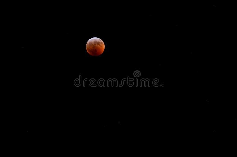 20. Januar 2019 Super-Wolf Blood Moon Eclipse über Mahomet, Illinois mit Sternen stockfotos