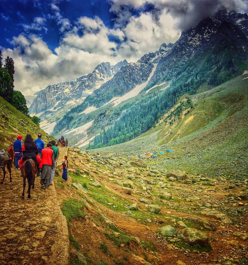 Januari 2019, Khilanmarg, Kashmir, Indien Turist- ridning på hästbaksida in mot den Khilanmarg dalen under dagtid Kashmir är beka arkivbilder