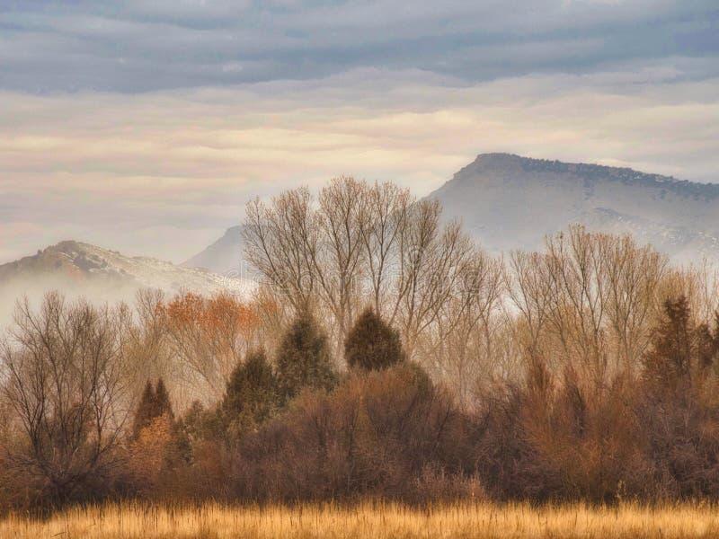 Download Januari-Mist Op Frosty Morning Stock Afbeelding - Afbeelding bestaande uit rots, nave: 107706293