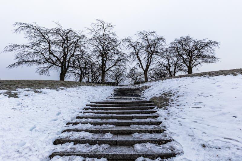 Januari 22, 2017: Trappa till en synvinkel av Skogskyrkogarden in arkivbilder