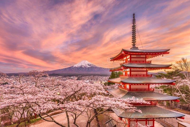 Japão na estação de mola fotos de stock