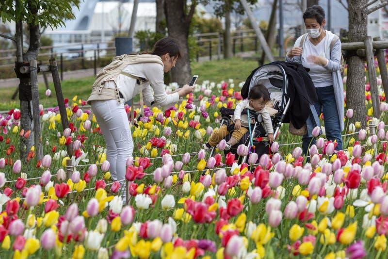 Japão, Tóquio, 04/08/2017 Os povos são fotografados no parque com tulipas de florescência imagens de stock royalty free