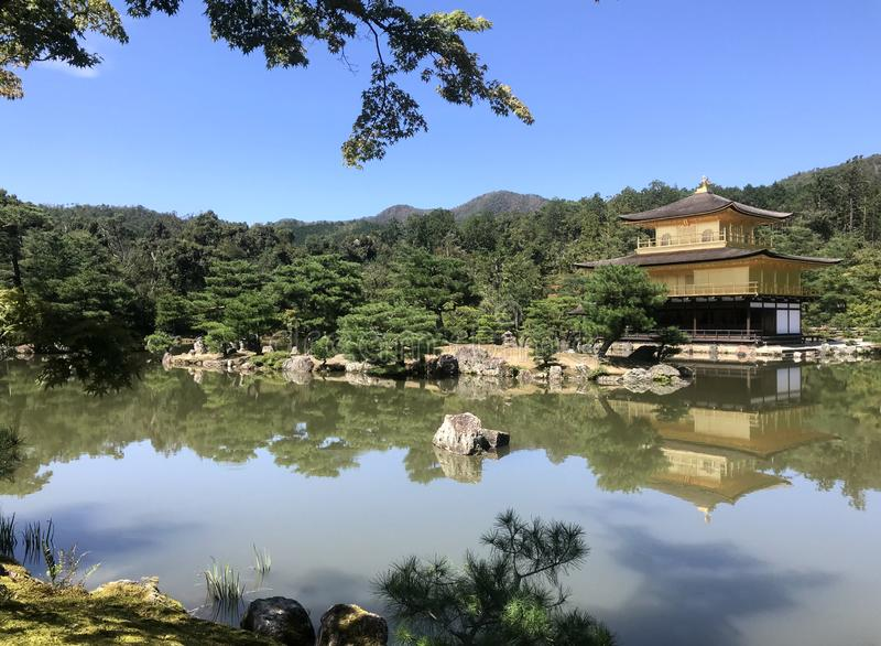 Japão, uma casa a rezar na lagoa foto de stock royalty free