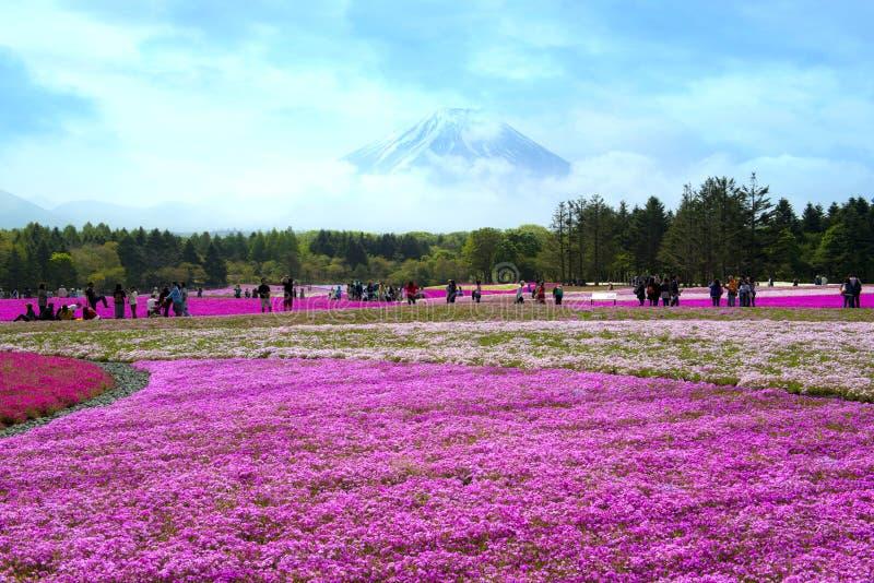japan royaltyfria bilder