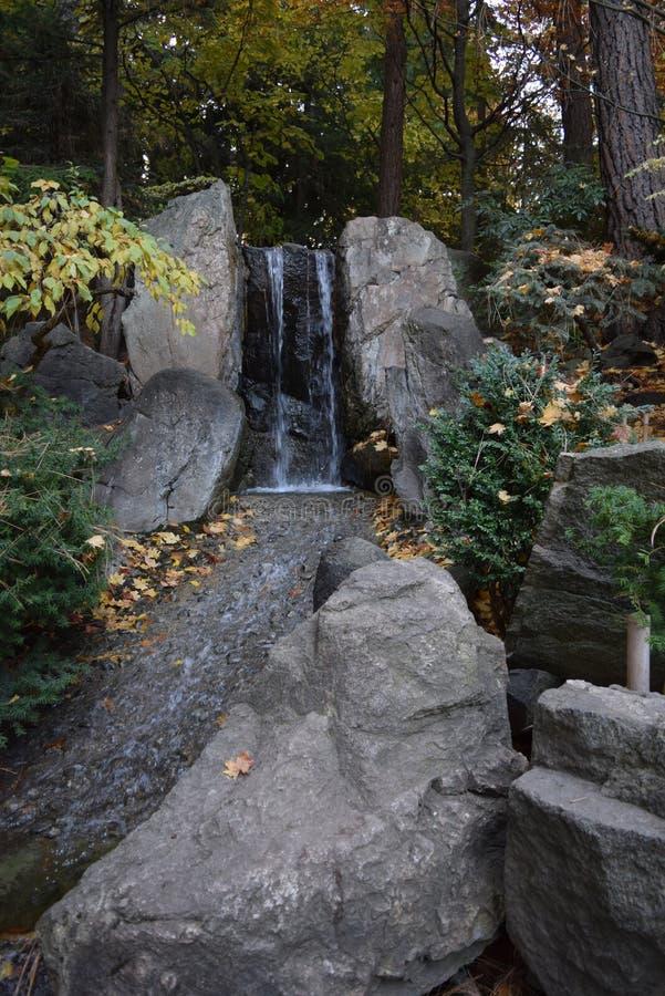Japan arbeta i trädgården på Manito parkerar arkivbilder