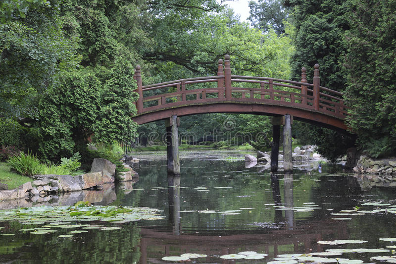 Japan bridge in garden. Photgraphy of japan bridge in green garden on summer stock photography