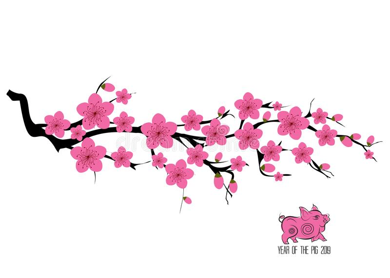 Japan cherry blossom branching tree illustration. Japanese invitation card with asian blossoming plum branch vector illustration