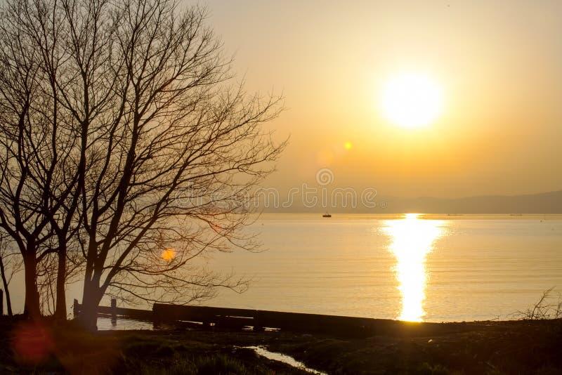 Japan Feng Park Sunset royaltyfri fotografi