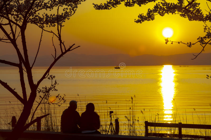 Japan Feng Park Sunset royalty free stock photography
