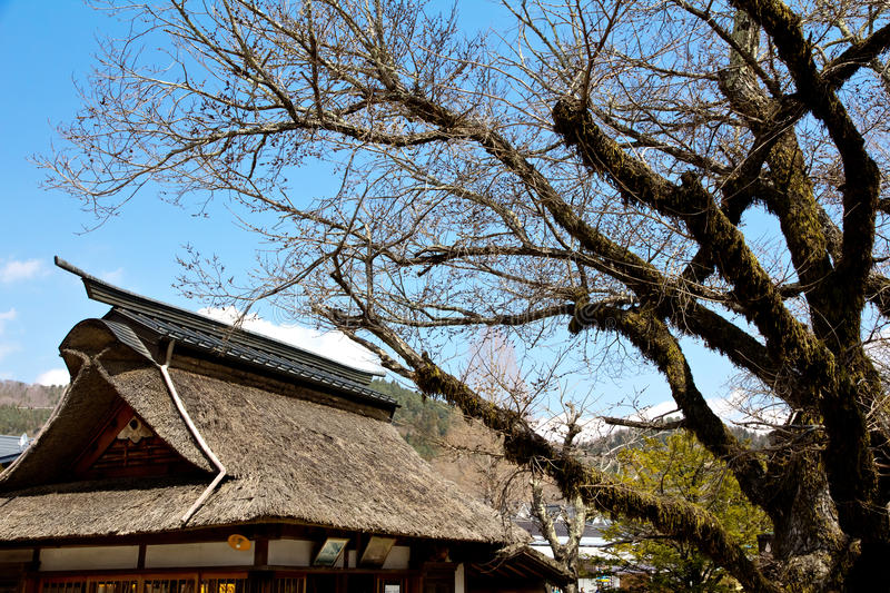 japan house roof in Oshino Village royalty free stock photo
