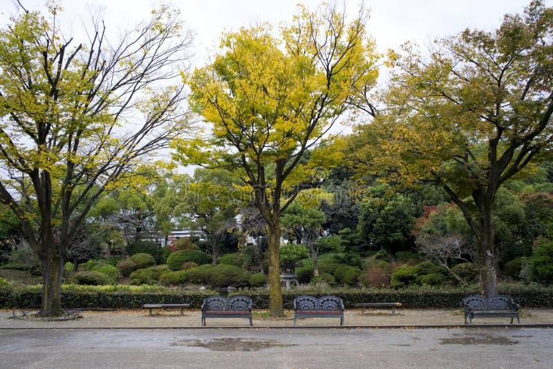 Japan parkerar och arbeta i trädgården royaltyfri foto