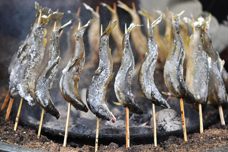 japan rökte forellen royaltyfria bilder