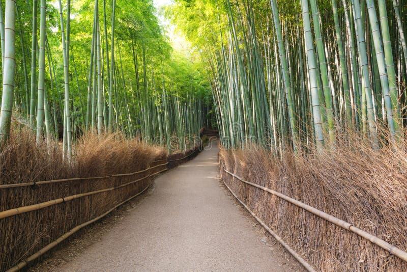 Japan-Reisezielmarkstein, Bambuswald Arashiyama in Kyoto lizenzfreie stockfotos
