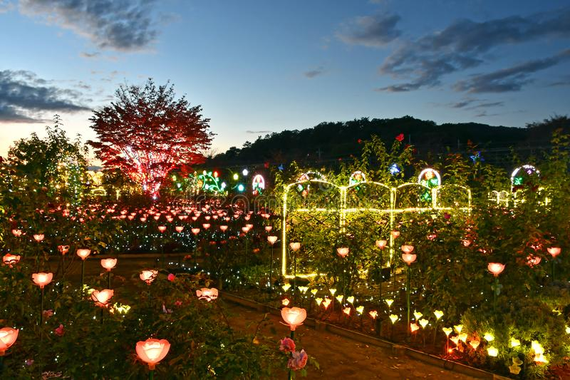 Ashikaga Flower Park Winter Illumination 2018. Japan`s Ashikaga Flower Park during its 2018 Winter Illumination. Named Flower Fantasy, the event is one of the royalty free stock photo