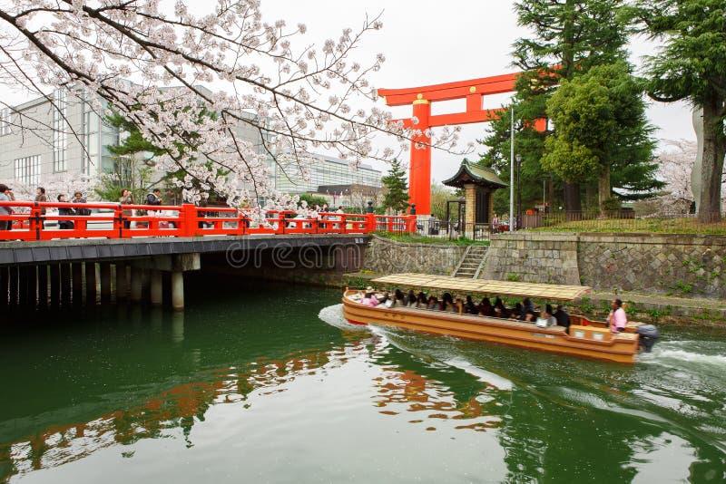 Japan`s cherry blossom season. His picture was taken in Torii Heian Jingu Heian shrine. The Heian Shrine is a Shinto shrine located in Sakyō-ku, Kyoto, Japan stock images