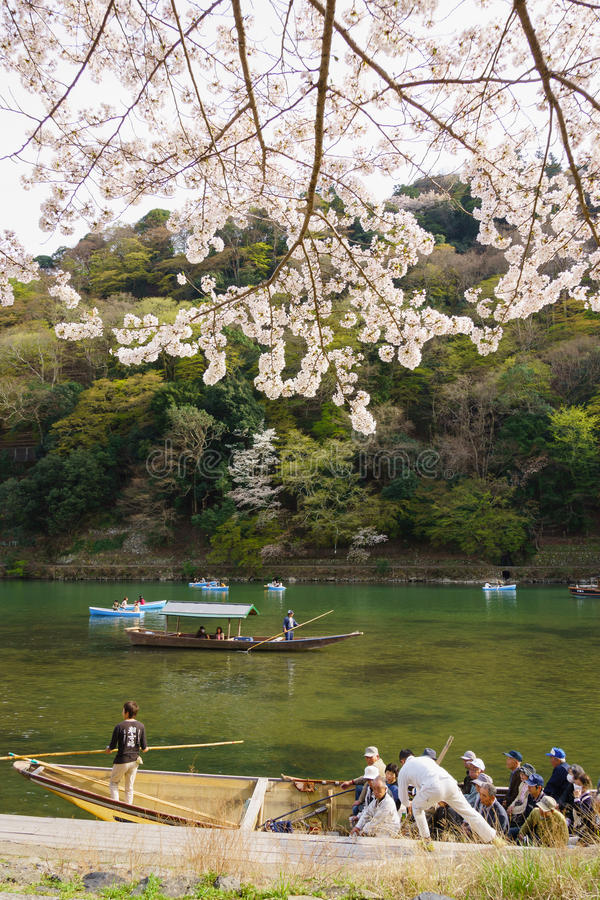 Japan`s cherry blossom season. This picture was taken in Arashiyama district in Kyoto Japan at springtime. Kyoto has so many nice places, specially at the cherry royalty free stock images