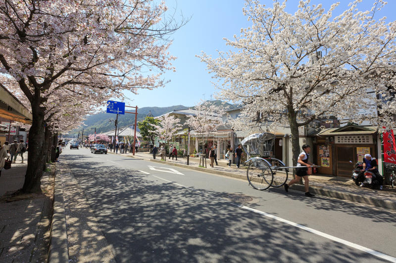 Japan`s cherry blossom season. This picture was taken in Arashiyama district in Kyoto Japan at springtime. Kyoto has so many nice places, specially at the cherry royalty free stock image