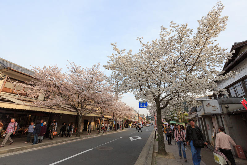 Japan`s cherry blossom season. This picture was taken in Arashiyama district in Kyoto Japan at springtime. Kyoto has so many nice places, specially at the cherry stock photo