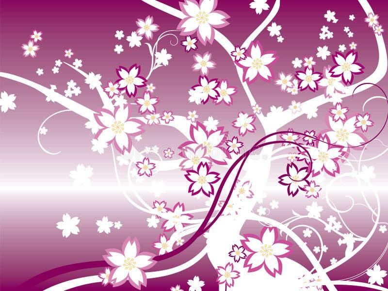 Japan Sakura stock illustration