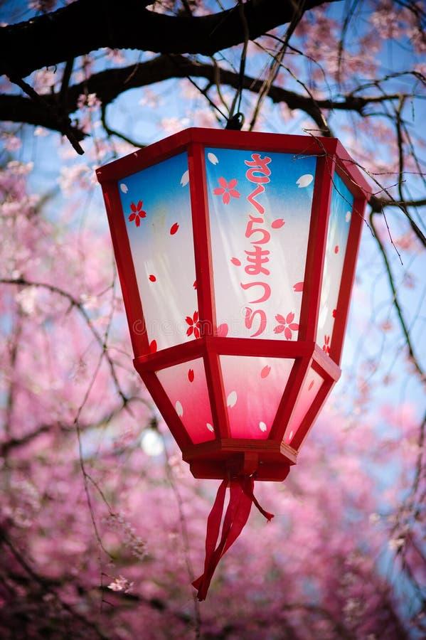 Japan Sakura Festival Lantern stock images