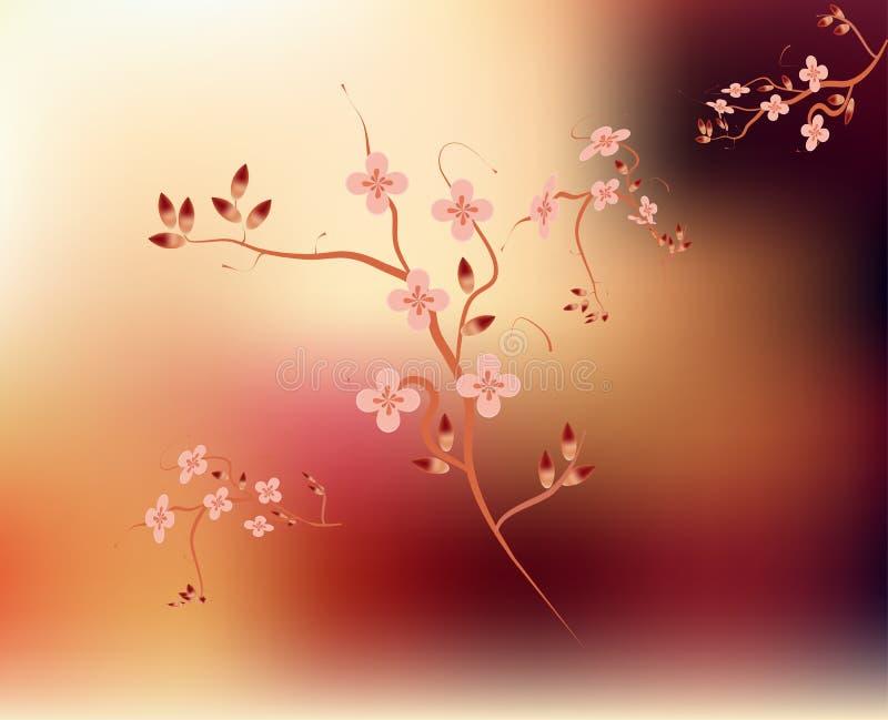 Japanen förgrena sig blomningrosa färgbakgrund vektor illustrationer