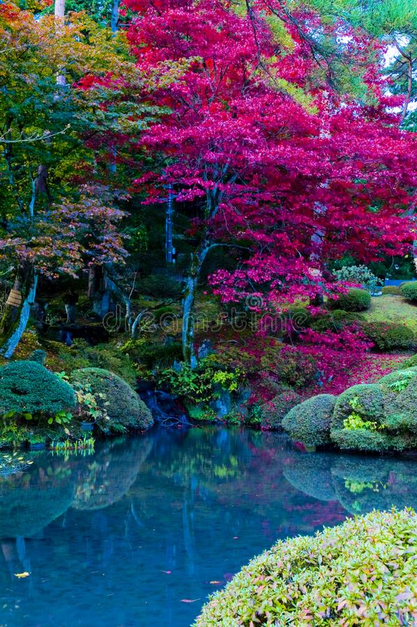 Download Japanese Autumn stock photo. Image of beauty, fall, outdoors - 15363838