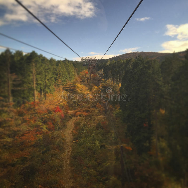 Japanese autumn ropeway. View of the vibrant colorful mountains in Hakone, Japan, form a ropeway cabin. Saturated colors and tilt shift effect applied royalty free stock image