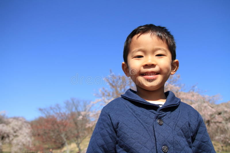 Japanese boy and cherry blossoms stock images