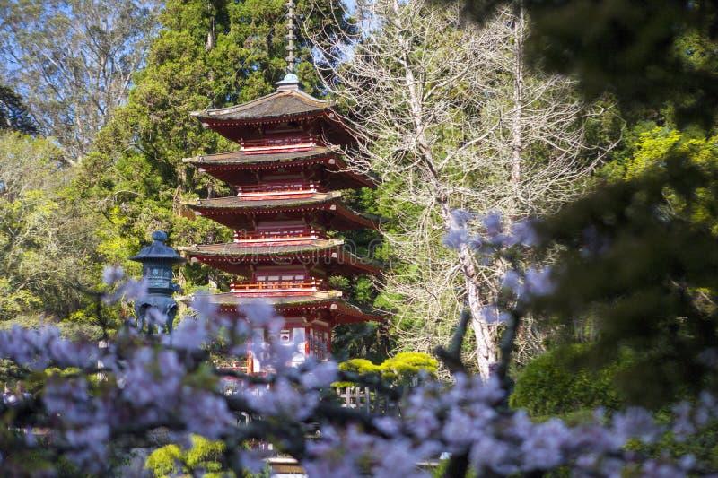 Japanese Building in garden. stock photo