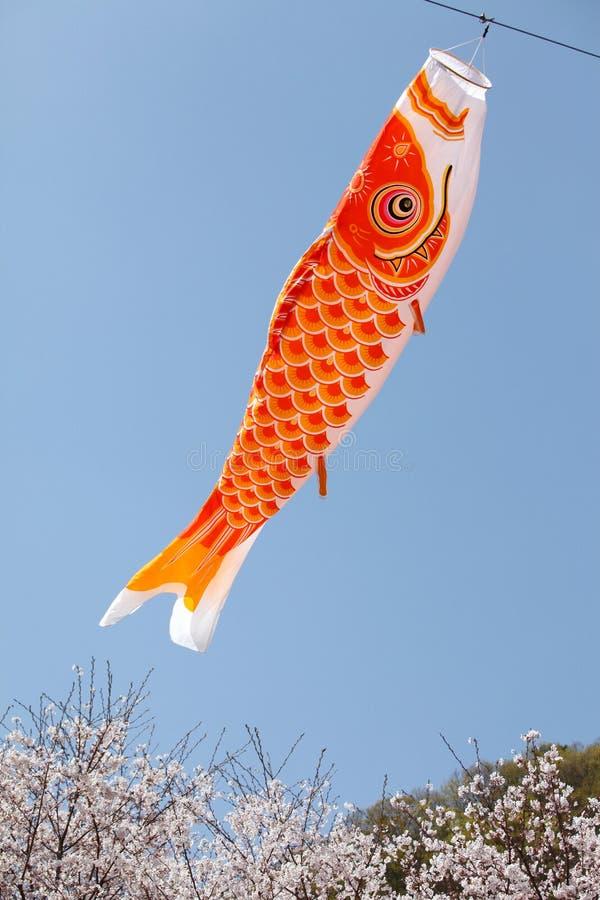 Download Japanese carp kite stock image. Image of craft, cherry - 13919885