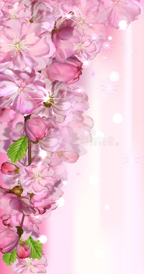 Download Japanese cherry blossom stock vector. Image of beauty - 32415697