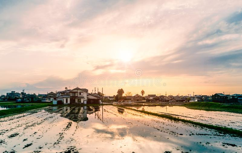 Japanese countryside with farm house and rice field. royalty free stock image