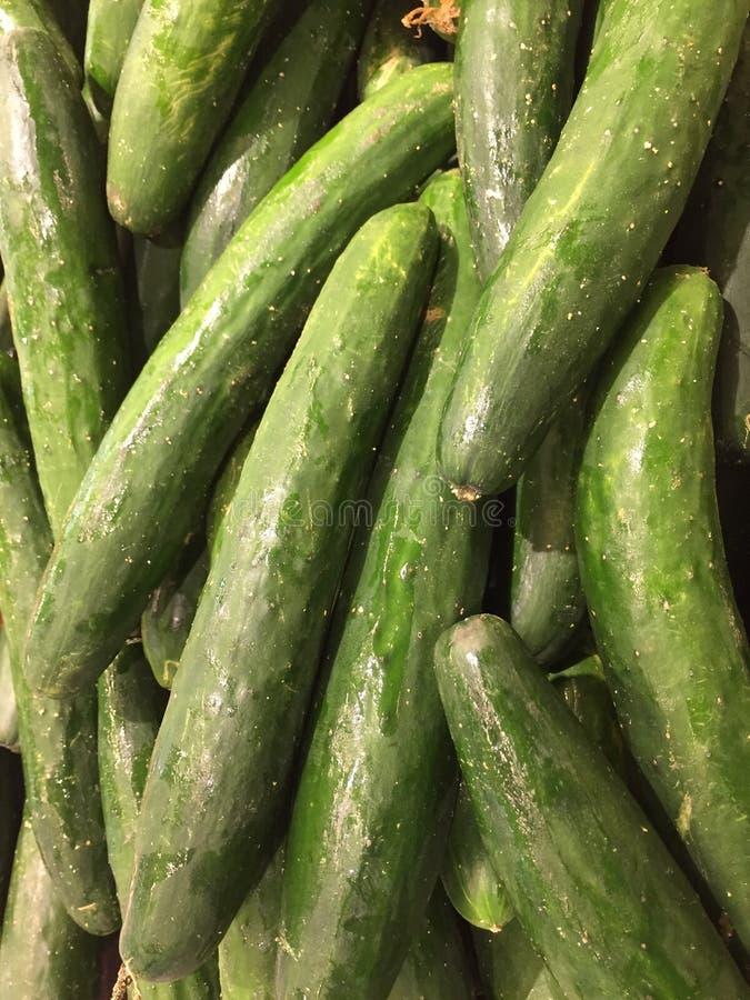 Japanese Cucumber stock photography